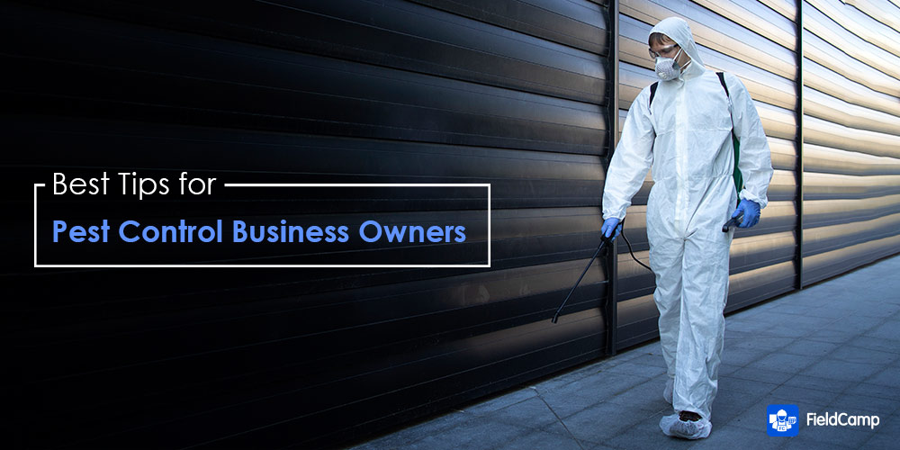 Pest Control Tips for Business Owners